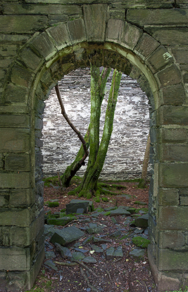 Abandoned chapel, near Corris