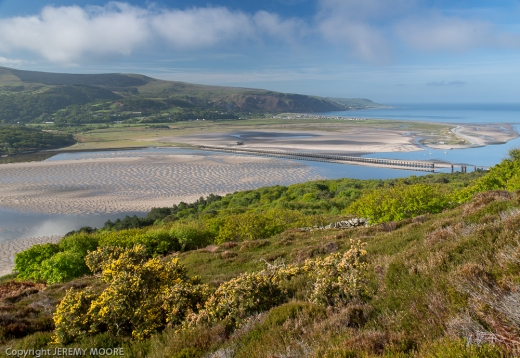 Mawddach estuary 8 am.