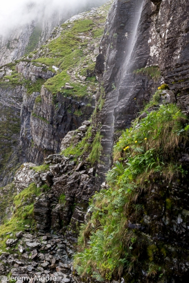 The hanging gardens in Cwm Idwal
